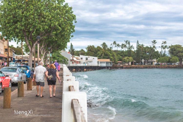 Lahaina Harbor2