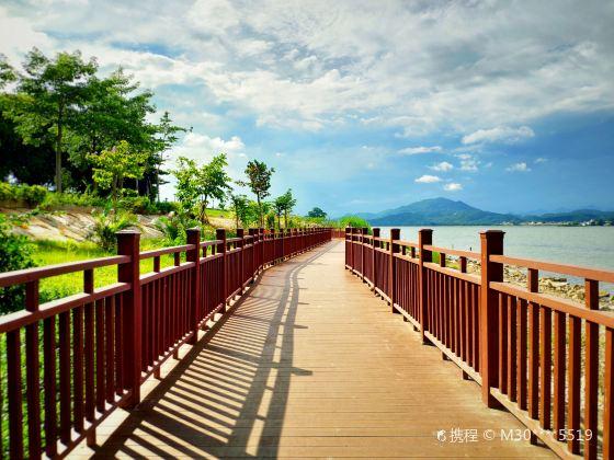 Hanjiangjin Shan Daqiao Wetland Park