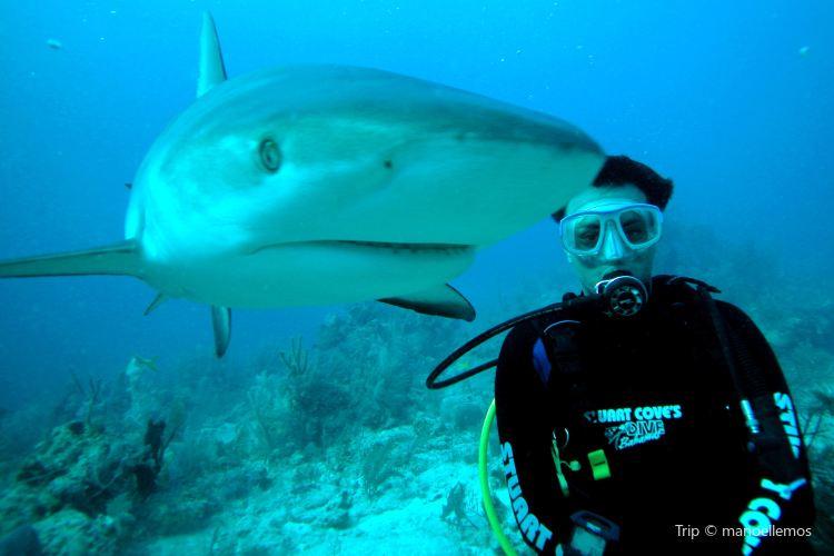 Xanadu Underseas Adventures1