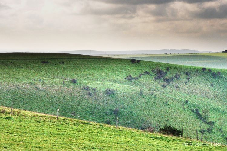 South Downs National Park3
