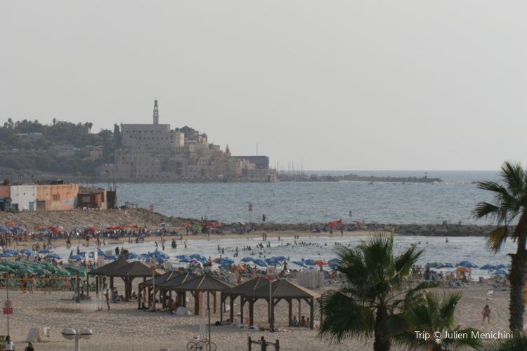 エルサレムビーチ1
