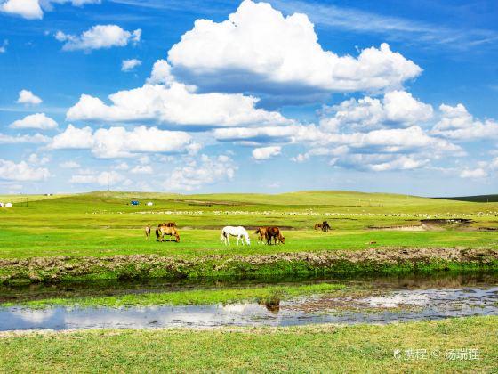 莫日格勒草原景區