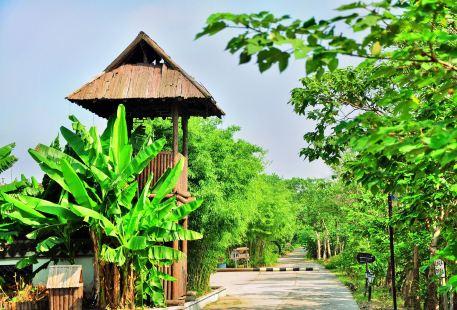 Daqian Ecology Manor