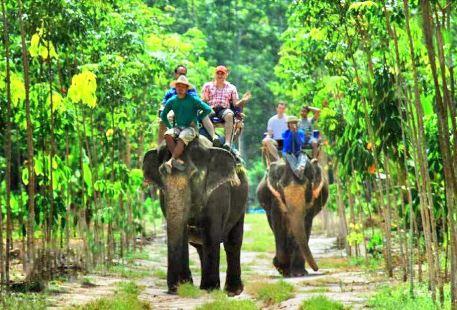 Kaibae Meechai Elephant Camp