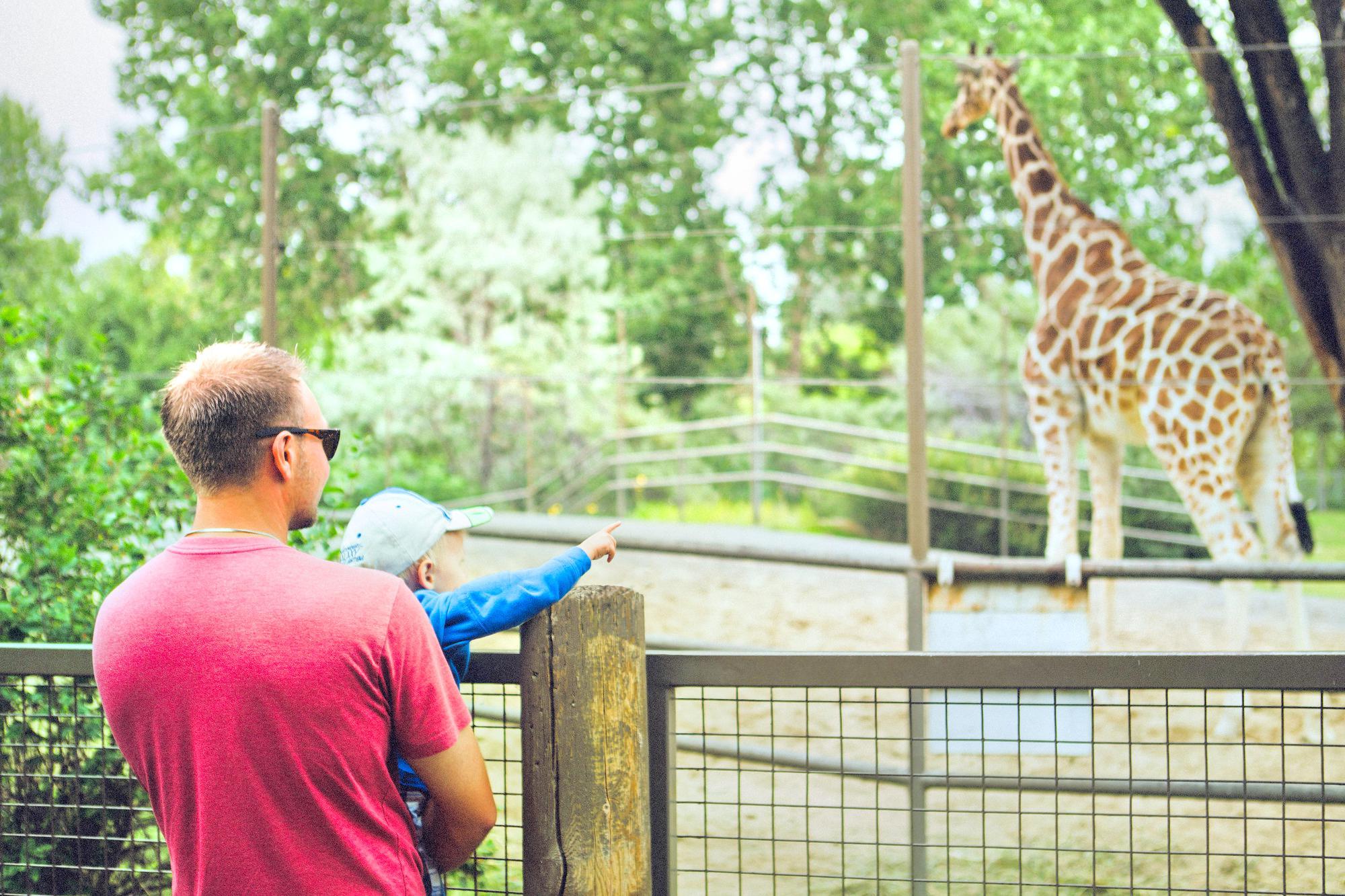 卡爾加里動物園