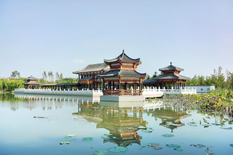 The Nanhu Wetland Park