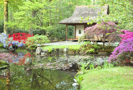 日本花園中心