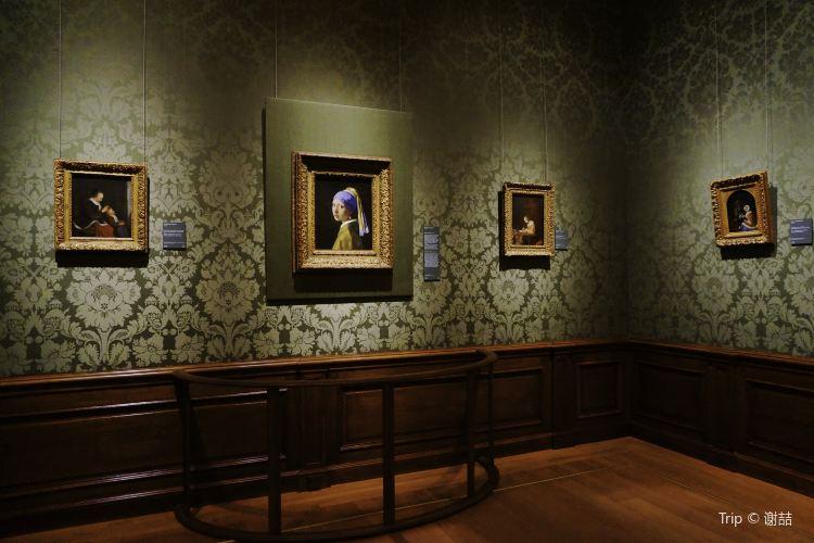 Mauritshuis Museum2