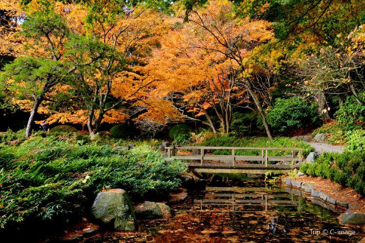 Nitobe Memorial Garden1