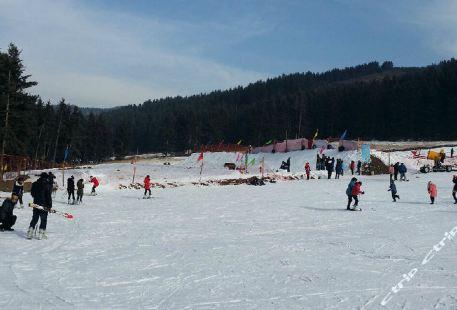 Kangle Villa Ski Field