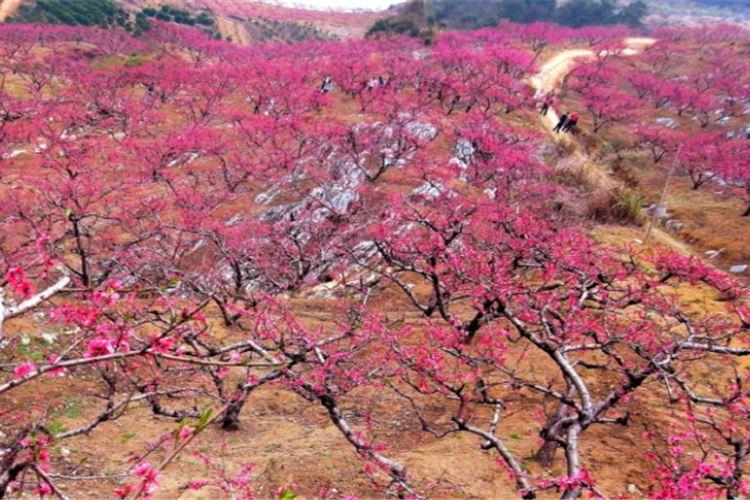 Guiyang Taohuaxi Scenic Area3