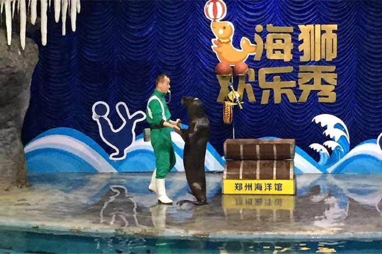 Zhengzhou Aquarium2