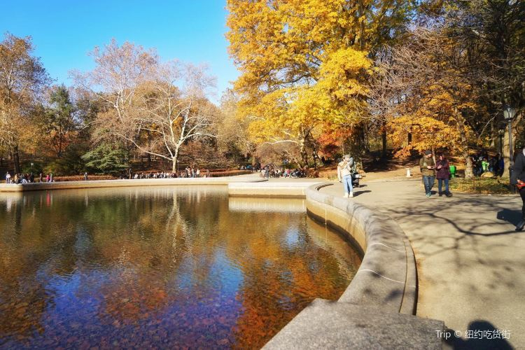 Conservatory Water2