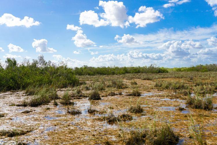 Everglades National Park2