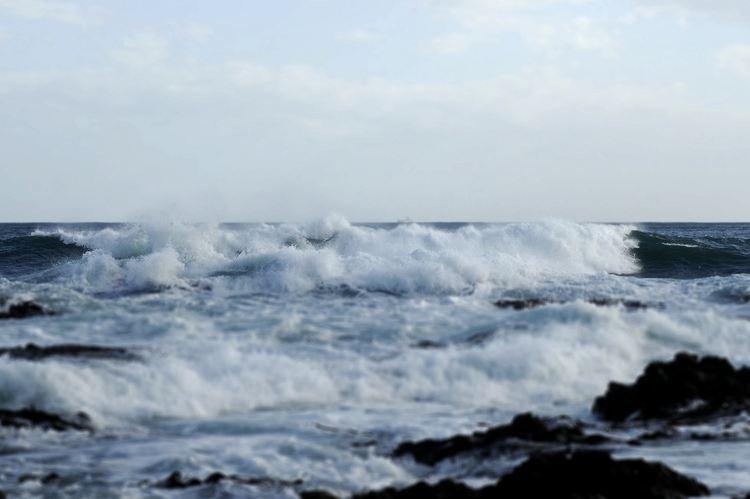 Island Bay3