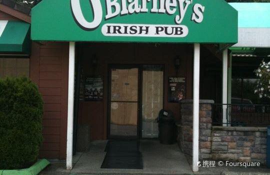 O'Blarney's Irish Pub2