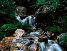 祥龍谷景區