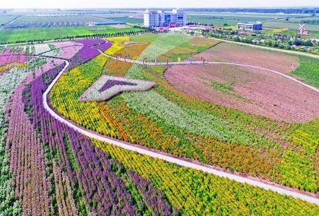 Baoquanlingxiandainongye Ecological Park