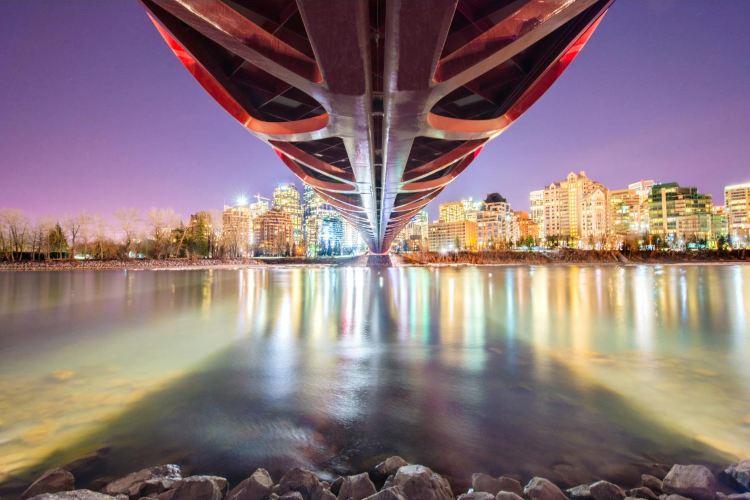 Peace Bridge3