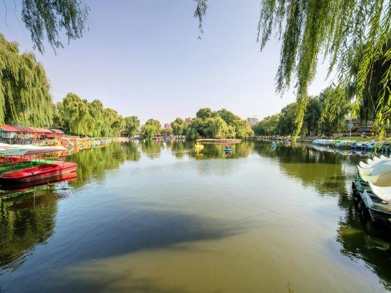 遼陽市青年湖公園