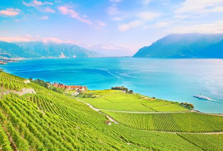 Top 5536 Attractions Recommended In Vevey Recommended Travel Guide Most Visited Tourist Attraction Trip Com