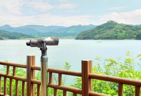 Daecheongho Lake