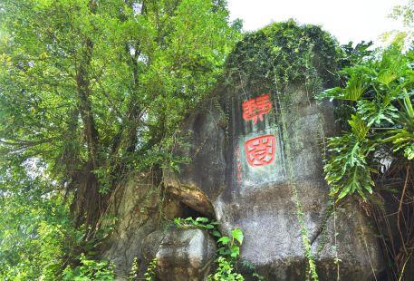 Qinyuan Garden