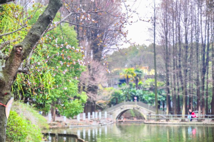 Chuansha Park