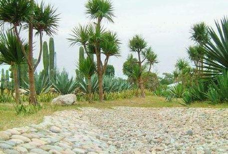 Lianjiang Botanical Garden