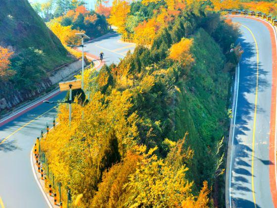 Liyang No. 1 Road (North District)