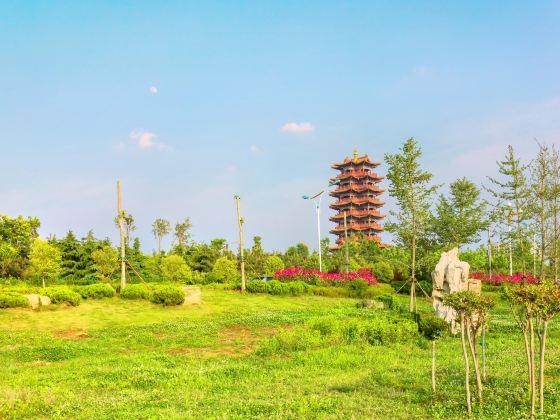 Huangshan Dongyi Cultural Park