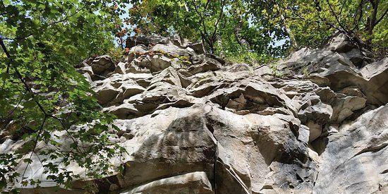 Grindstone Nature Area