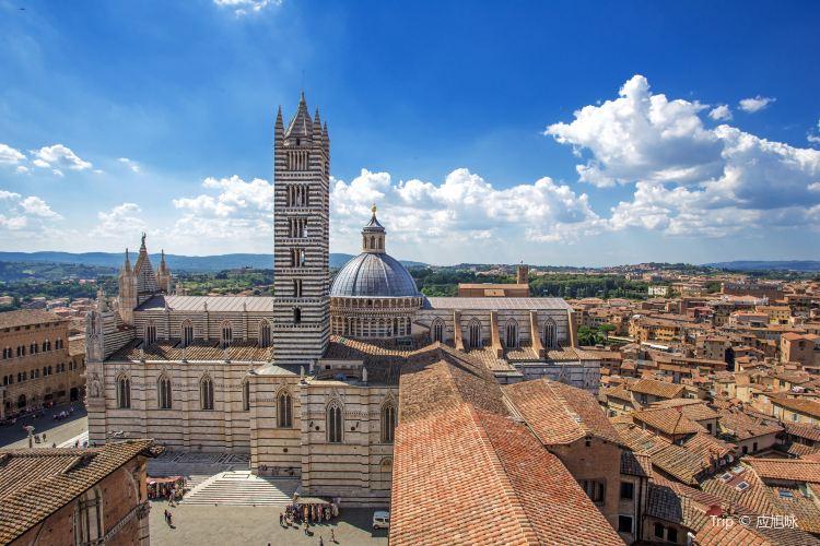 Duomo di Siena3