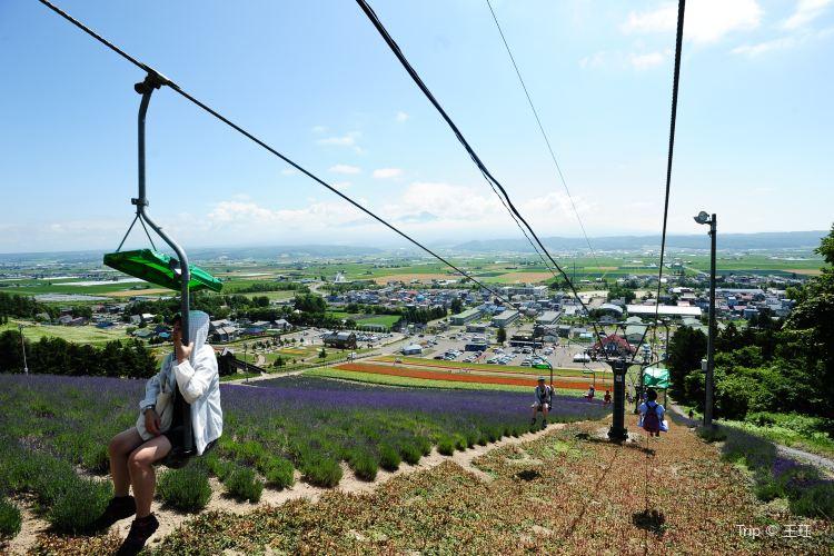 Choei Lavender Park3