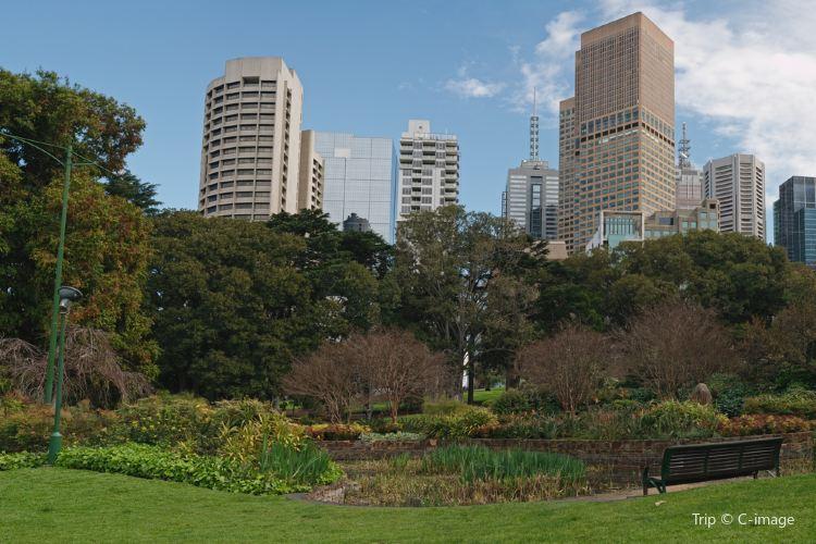 Treasury Gardens1