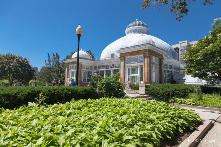 愛倫溫室花園1