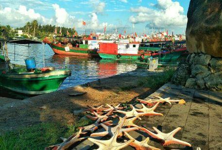 Tanmen Zhongxin Fishing Port