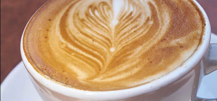 Mokoko Coffee, Southgate3