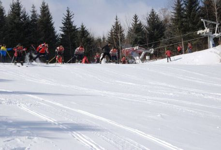 Mingren Ski Field