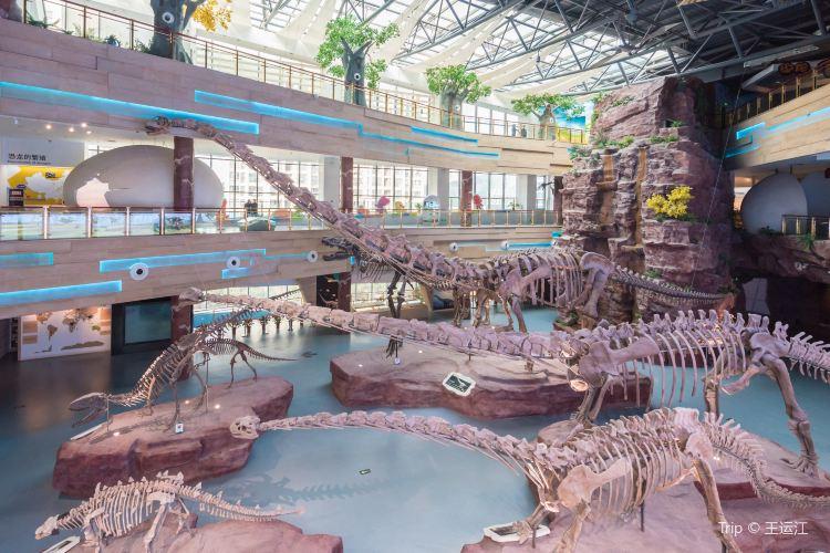 Geological Museum of Anhui4