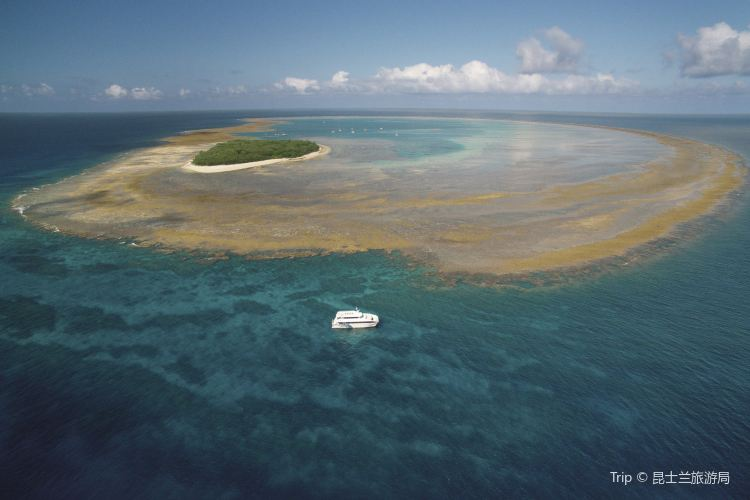Lady Musgrave Island1