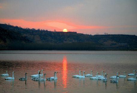 Big Swan Scenic Area