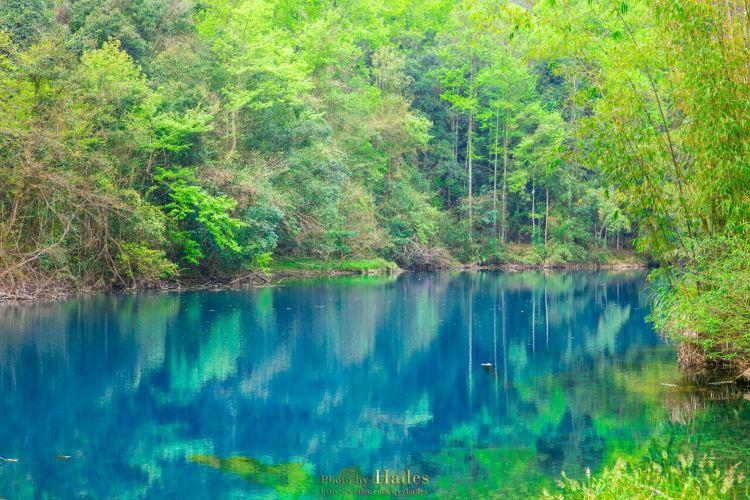 Wolong Pond2