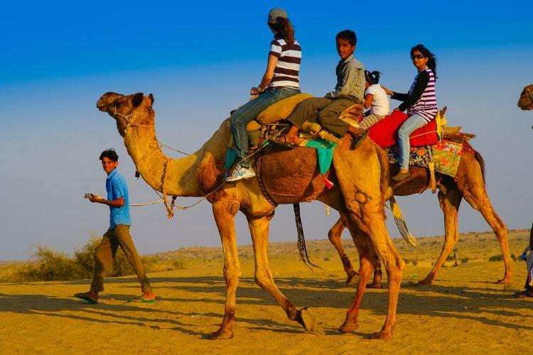 塔爾沙漠1