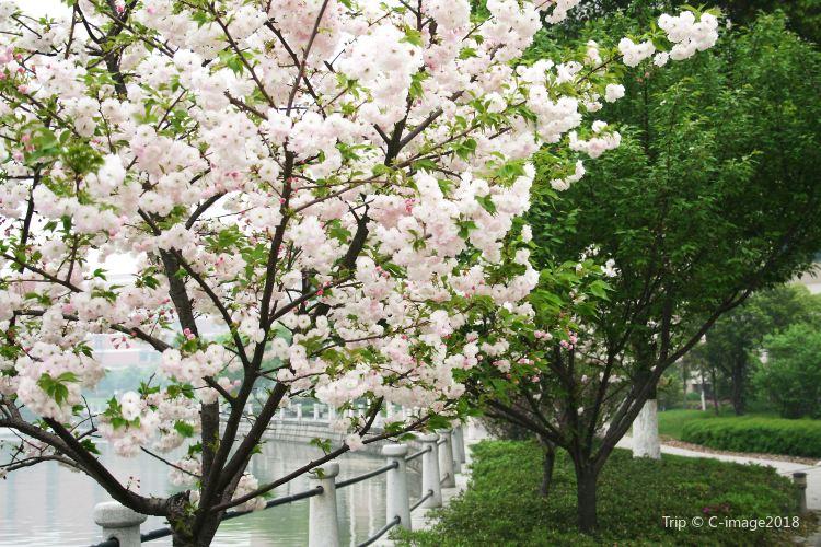 Nanguo Peach Garden2