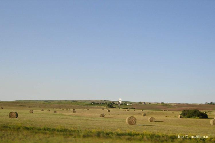 Prairie Farm3