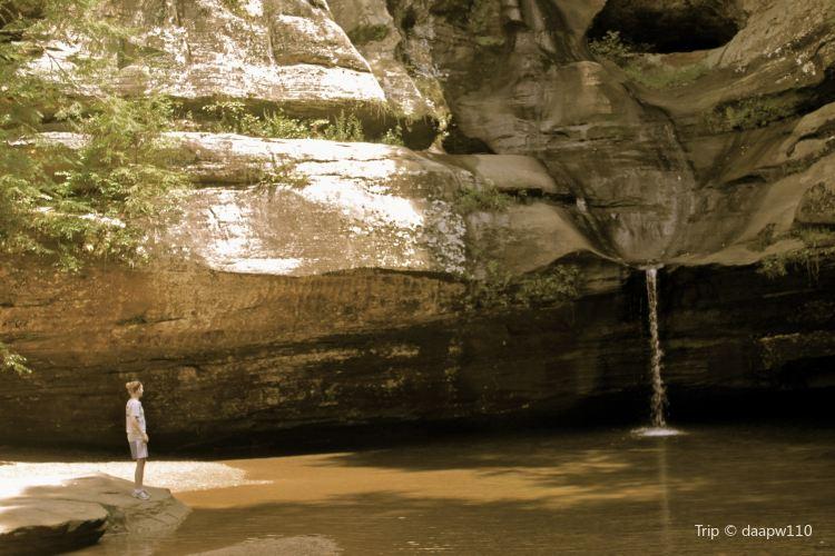 Cedar Falls2