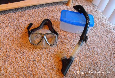 Snorkel Bob's Kihei