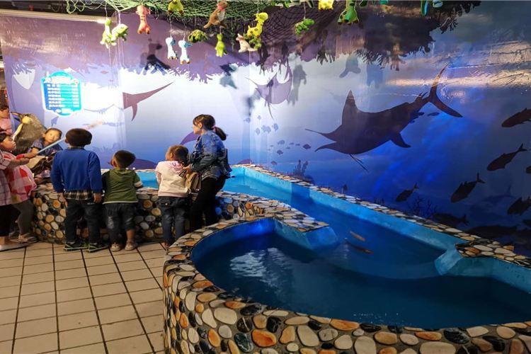 吳忠BHG鯊魚海洋樂園2