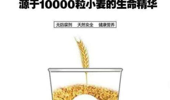 一萬粒胚芽濃漿(海印公園店)1
